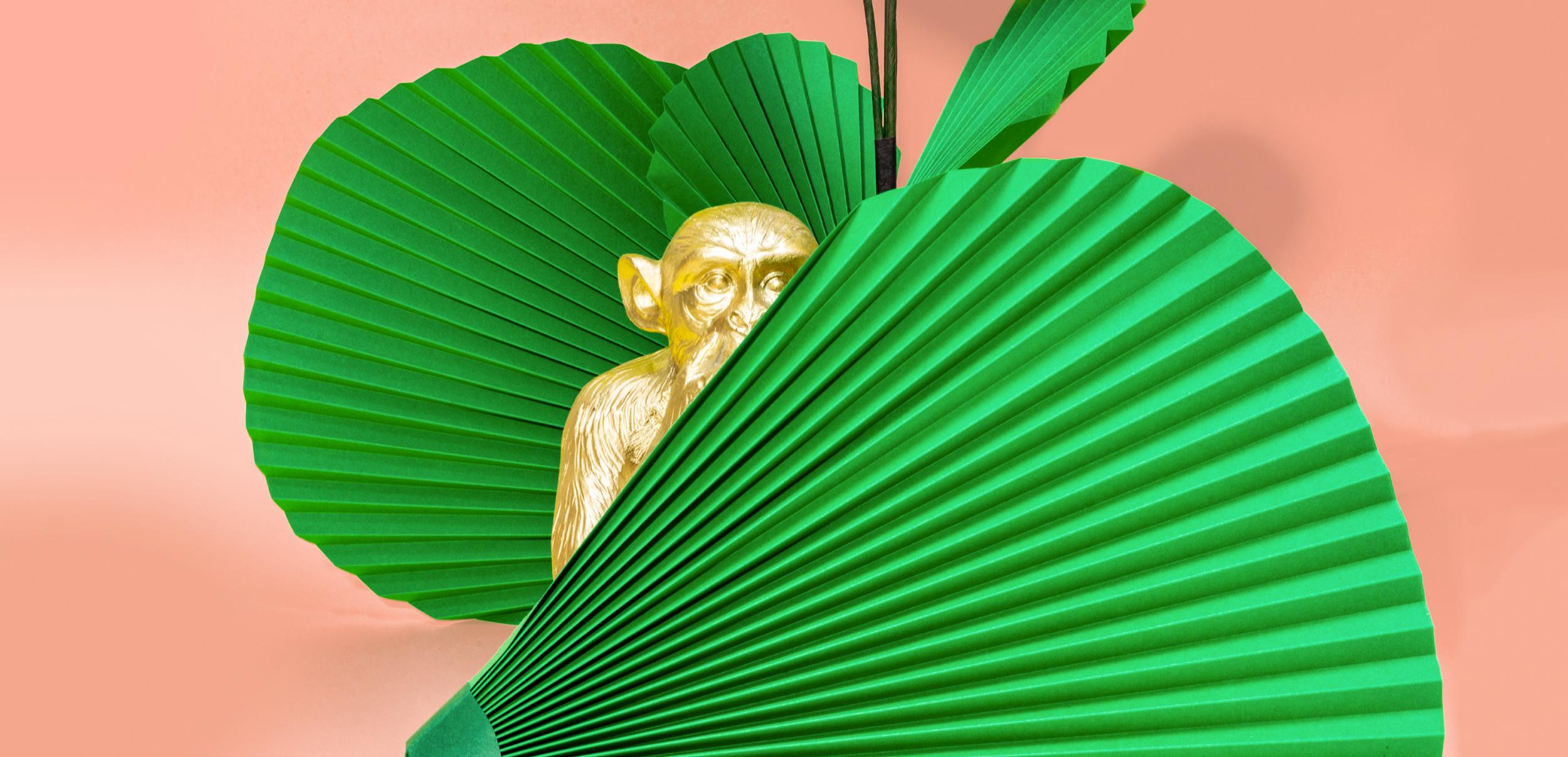 Fotografía de producto y dirección de arte para la identidad y la tienda online de Jungla, plantas de papel.