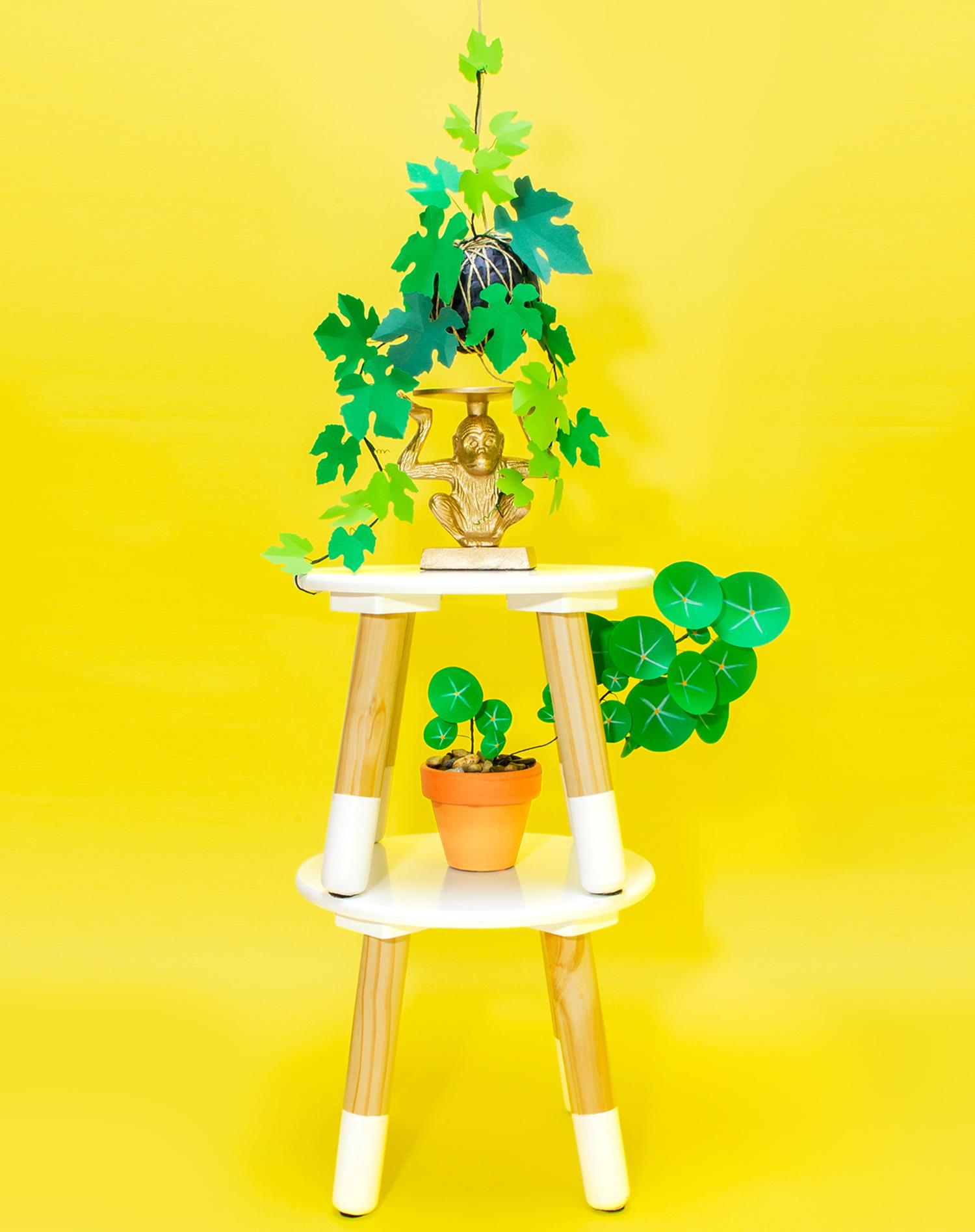 Fotografía de producto para la identidad y la tienda online de Jungla, plantas de papel.