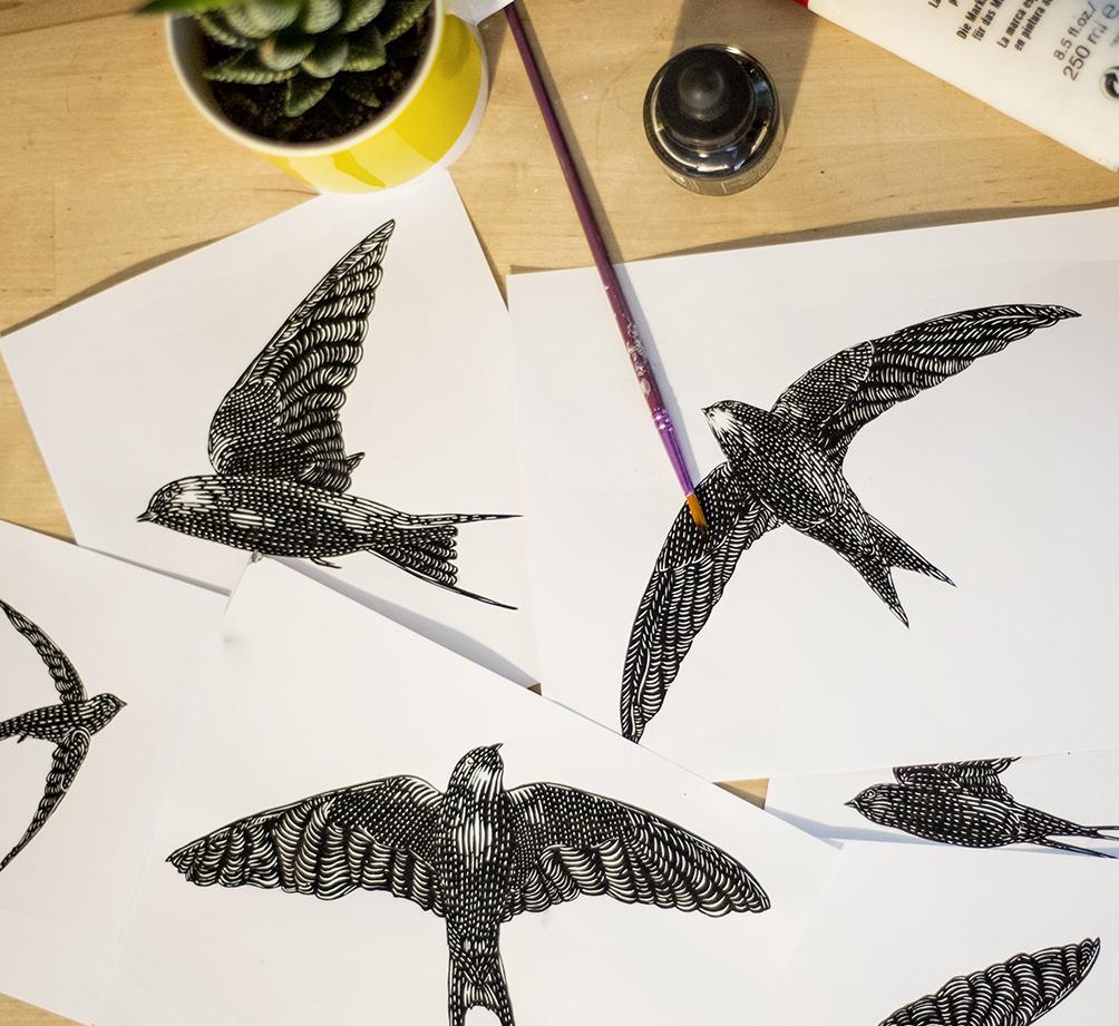 Ilustraciones de aves para la etiqueta de vino Alma Libre.