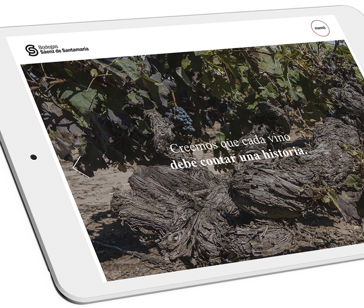 Ilustración y diseño web con tienda online para bodega riojana de Cenicero. Saenz de Santa María.