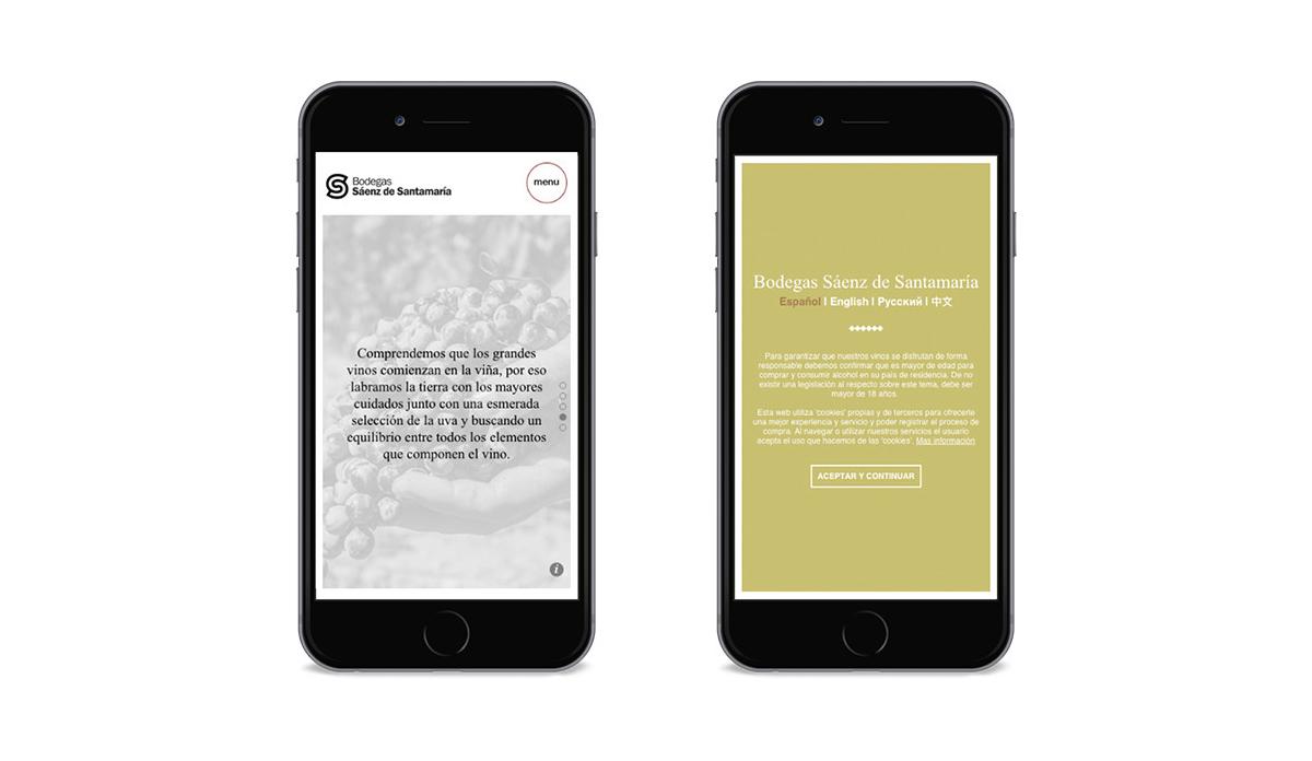Diseño web y tienda online bodega SS. 4