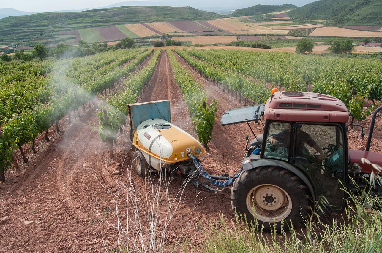 tractor trabajando en el viñedo