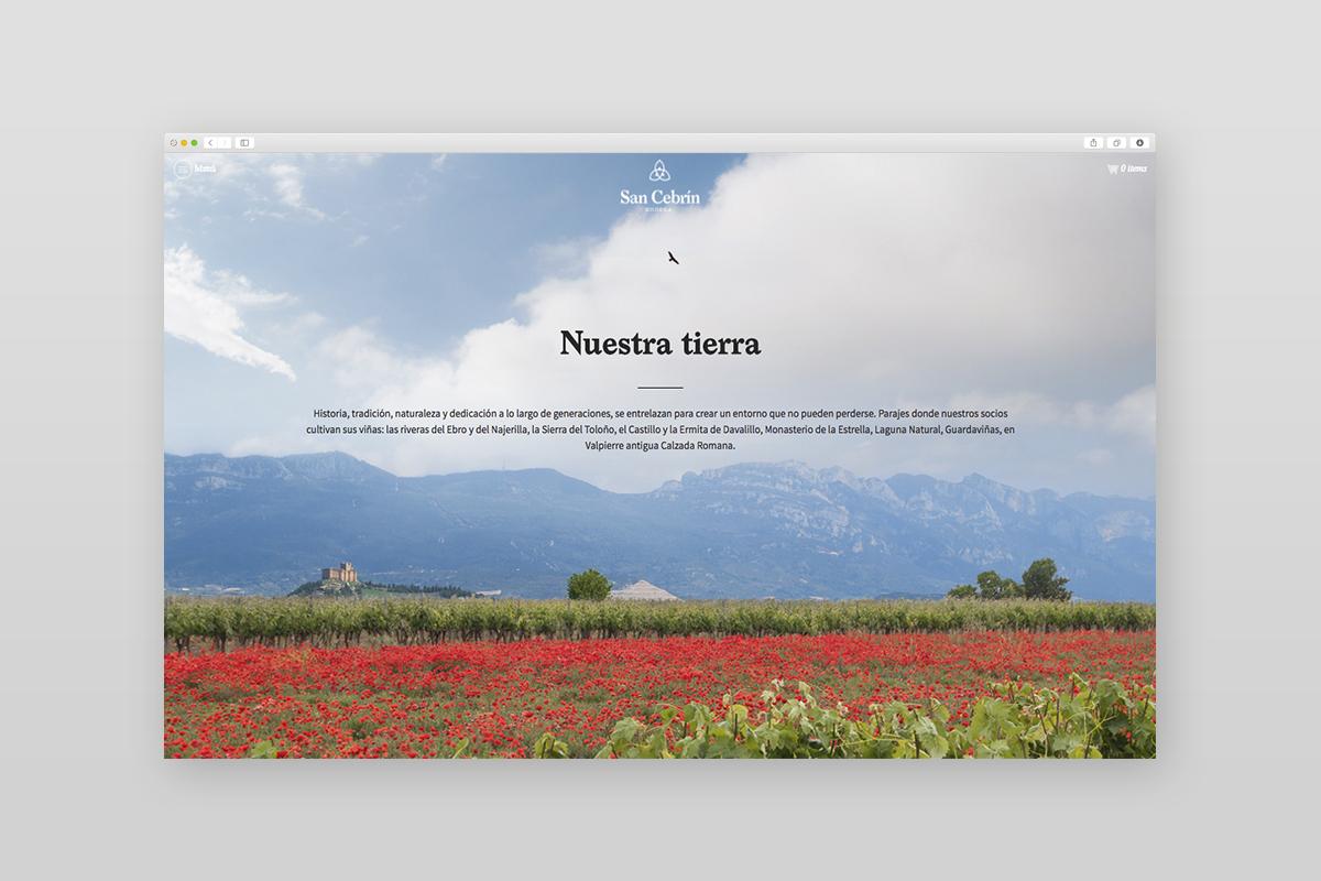 diseño página web San Cebrín